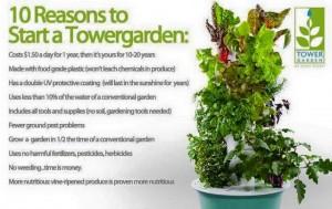 towergarden4