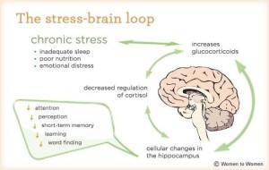 chronicstressbrain